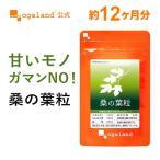 【新春1年分セール】桑の葉 青汁サプリ ハーブ 健康食品 サプリメント 約12ヶ月分