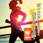 【1年分】Lカルニチン (lカルチニンフマル酸塩) ダイエット サポート アミノ酸 燃焼系 健康食品 サプリメント 約12ヶ月分 _JD