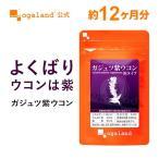 【新春1年分セール】ウコン ガジュツ 紫うこん ダイエットサポート サプリ 健康食品 サプリメント 約12ヶ月分