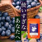 【新春1年分セール】ブルーベリー 健康食品 サプリメント 約12ヶ月分