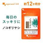 【1年分】ノコギリヤシ サプリメント 約12ヶ月分 亜鉛 トマトリコピン ビタミンE _JH