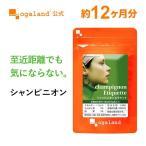 【新春1年分セール】エチケット サプリ シャンピニオン 健康食品 サプリメント 約12ヶ月分