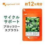 セール ブロッコリースプラウト サプリ スルフォラファン ビタミン ミネラル ファイトケミカル ダイエット サプリメント 約1ヶ月分