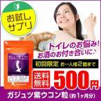 ウコン サプリ クルクミン ガジュツ 紫うこん サプリメント 約1ヶ月分