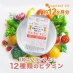 ビタミン サプリ マルチビタミン サプリメント ビタミンE ビタミンC ベース 13種類 約1ヶ月分
