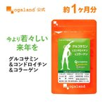グルコサミン コンドロイチン コラーゲン(II型コラーゲン、フィッシュコラーゲン) 運動サポート 健康食品  サプリメント  約1ヶ月分