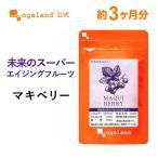マキベリー サプリ アントシアニン 食物繊維 亜麻仁油 エゴマ油 サプリメント 約3ヶ月分