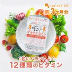 マルチ ビタミン サプリメント ベース サプリ 13種類 ビタミンE ビタミンC 約3ヶ月分
