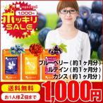 【デジケアサプリセット】 ブルーベリー ルテイン カシス サプリメント (各約1ヶ月分)送料無料