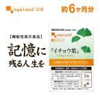 イチョウ葉 サプリ ナイアシン ギンコライド パントテン酸Ca ビタミン B1 B2 B6 サプリメント 約6ヶ月分
