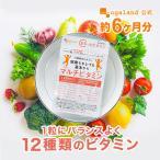 マルチビタミン ベースサプリ 13種類 ビタミンE ビタミンC サプリメント 約6ヶ月分 半年分セール