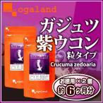 ガジュツ紫ウコン(うこん)粒  サプリメント 約6ヶ月分