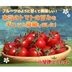 小笠原ミニトマト 850g