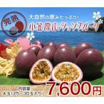 小笠原パッションフルーツ 2.5kg 大玉(28〜30玉入り)