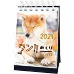 予約販売 2021年 ワン!!めくりカレンダー 1000115873 vol.015