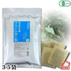 小川生薬 徳島産有機ウラジロガシ茶 105g(35袋)