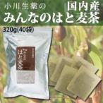 はとむぎ茶 国産 はと麦茶  320g(40袋)