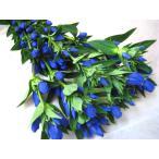 リンドウ 安代の夏など5本 切花 生け花 花材