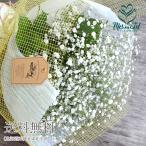 花 ギフト 誕生日 かすみ草とグリーンの花束 花言葉 結婚記念日 花 お祝い 記念日 プレゼント お見舞い