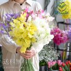 成人祝い 生花 スイートピーの花束  30本 香り溢れる 誕生日 送別会 歓迎会 退職祝い 歓送迎会 送別 卒業 ギフト