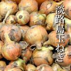 完熟淡路島たまねぎ(根岸農園)【減農薬】1kg(約3〜4個)