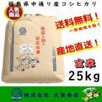 コシヒカリ 玄米 福島県産 お米 米 25kg 平成28年度産 送料無料 福島県中通り産コシヒカリ玄米25kg