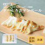 珍味 チーとろカマンベール 50枚入り 送料無料 おやつ お菓子 酒のつまみ おつまみ チーズ 冷凍
