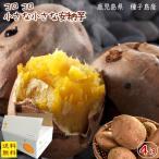 (生活応援!1980円!)小さな安納芋(手のひらサイズ)5kg箱(内容量約4.5kg) 送料無...