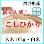 令和2年産 お米 10kg 送料無料 福井 コシヒカリ  玄米 白米 新米 コメ 福井県産 こしひかり 玄米 から 精米 選択可能