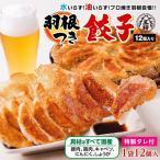 羽根つき餃子 (おつまみ・ギョウザ・ギョーザ) 油・水いらずで完成♪
