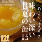 はちみつ入り甘夏みかんの缶詰(12缶入り)