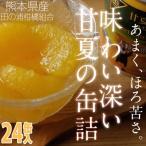 はちみつ入り甘夏みかんの缶詰(24缶入り)