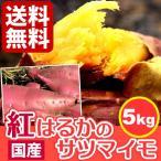 国産さつまいも 焼き芋にも人気 紅はるか 生芋  サツマイモ 薩摩芋 5kg