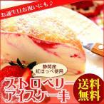バレンタインチョコ アイス ケーキ おしゃれ 苺 スイーツ 誕生日プレゼント ギフト