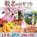 母の日 2017 花 プレゼント スイーツ 限定ギフト あじさい 鉢植え 早割 5号鉢 flower フラワー