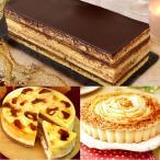 クリスマスケーキ チョコレート 予約 おしゃれ (4号+12cm) 2人用