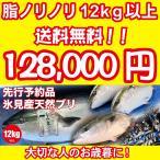 2021年入荷次第発送開始 [天然ブリの王様!美味しい魚特選海鮮ギフト]氷見産 天然寒ブリ12kg以上[国産][通常便]