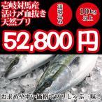 (送料無料)壱岐対馬産 天然寒ブリ10kg以上(活け〆血抜き神経抜き)