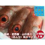 [美味しい魚特選海鮮ギフト]のどぐろ(アカムツ)長崎・玄界灘・山口産 300g-400g前後 3尾 合計1kg前後