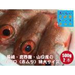 [美味しい魚特選海鮮ギフト]のどぐろ(アカムツ)長崎・玄界灘・山口産 500g前後 2尾 合計1kg前後