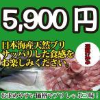 青甘魚, 鰤魚 - 2017年年始以降に入荷次第発送 日本海産 ブリ(天然ブリ)[生] 1匹(3kg前後)