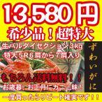 (送料無料)(最高ランク幻の大ズワイガニ美味しい魚特選海鮮ギフト)超特大5R 大ズワイガニ3kg【6〜7肩】(生バルダイセクション)(ロシア産)(冷凍便)