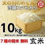 平成28年度産 新米 冷めてもおいしい(コシヒカリ/こしひかり/米/お米/お取り寄せ/お中元/お歳暮)