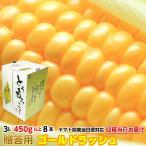 とうもろこし 茨城県 トウモロコシ  朝採り 黄色系 3L 450g以上8本 約3.6kg お届品種は商品詳細参照 甘い 美味しい ギフト お取り寄せ 産地直送 コーン