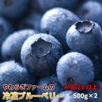 ブルーベリー 「冷凍 ブルーベリー」 1kg (500g×2)  茨城県 小美玉 やわらぎファーム 産地直送 茨城 母の日 父の日