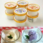 やわらぎファーム アイス 無添加 無着色  ブルーベリーアイスクリーム、りんごアイスクリーム  100ml 各5個 計10個  ブルーベリー りんご リンゴ