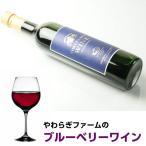 やわらぎファーム ワイン  ブルーベリーワイン 500ml×2本   やわらぎファームのブルベリーを100%使用 女性向け 甘口 ワイン ブルーベリー 茨城