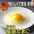 卵 タマゴ  やさと産直たまご L20個   安全安心 産み立て産地直送 卵 たまご 玉子 茨城  ギフト お取り寄せ