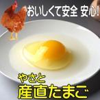 卵 タマゴ  やさと産直たまご M90個   安全安心 産み立て産地直送 卵 たまご 玉子 茨城  ギフト お取り寄せ