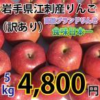 岩手県 江刺産 りんご 訳あり 5kg 大玉から小玉 約12コから25コ 2種類以上入る場合あり 送料無料 一部地域を除く 江刺